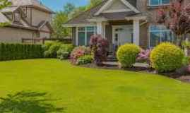 The Lesser Known Benefits of Landscaping