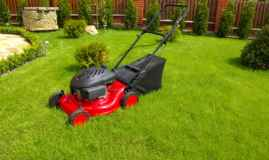 How Do You Look After Your New Lawn?